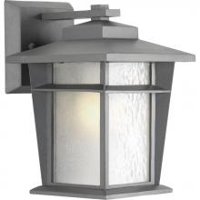 Progress P6040-136WB - One Light Etched Seeded Glass Textured Graphite Wall Lantern